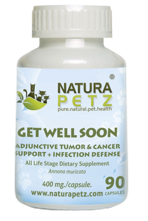 Get Well Soon - Adjunctive Tumor Support + Infection Defense*