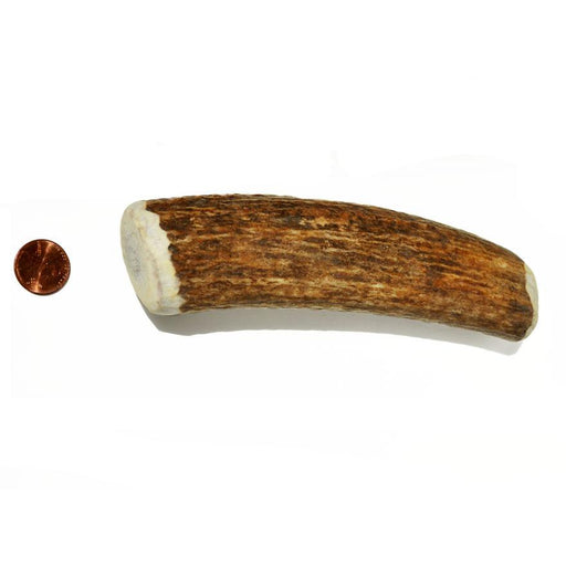 Choice Wise Whole Antler Chew - Straight Cut