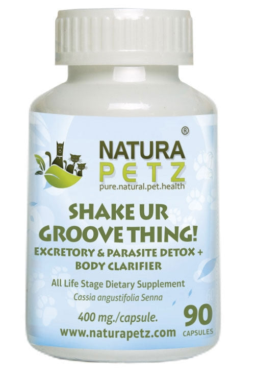 Shake Ur Groove Thing -  Bowel and Parasite Detox + Body Clarifier and Digestive Support