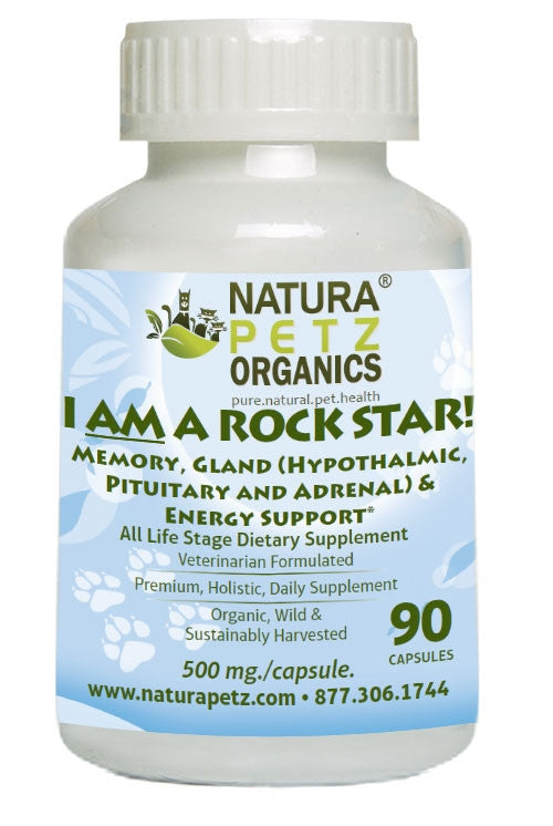 I AM A Rock Star - Memory, Gland (Hypothalmic, Pituitary and Adrenal) & Vitality Support*