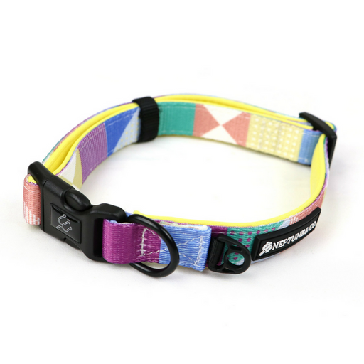 Pastel Pooch Collar by Neptune & Co.