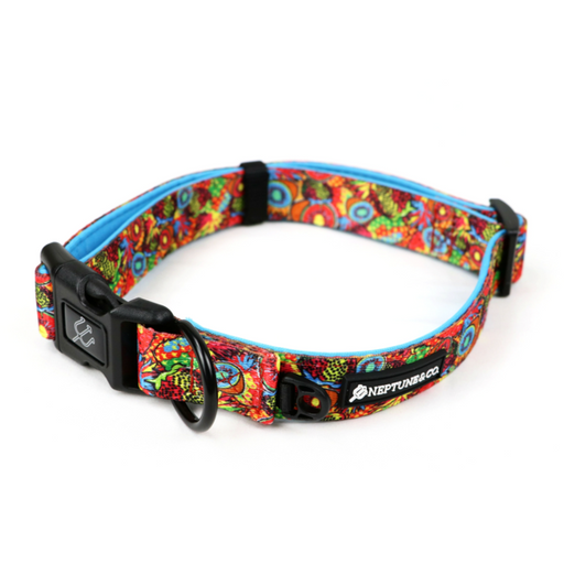 Pup Art Collar by Neptune & Co.