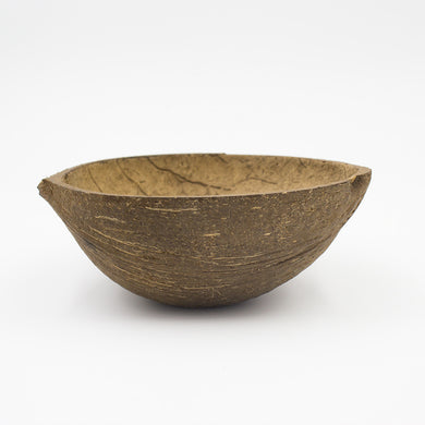 Coconut Shell (Sanded Bottom)