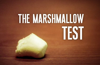 (HD) Video Illustration: The Marshmallow Test
