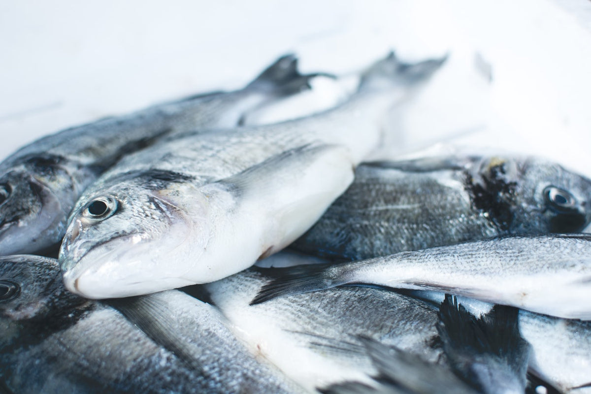 NutriTips | Myths and Facts About Farm-Raised Fish