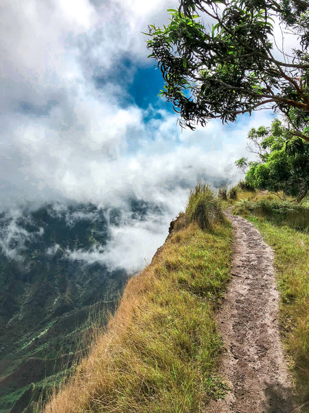 The Clever Girl's Guide to Hiking Kauai's Kalepa Ridge Trail