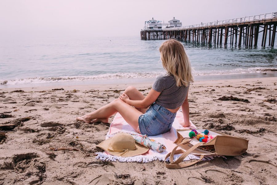 The Clever Girl's Guide to Summer Vacation