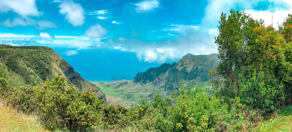 Clever Girl's Guide to Kauai Hawaii
