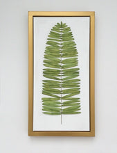 10x20 Silk Ribbon Fern