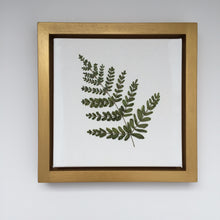 8x8 Silk Ribbon Fern