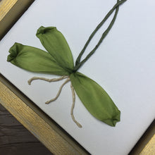 Orchid 3D Botanical Up Close Leaves