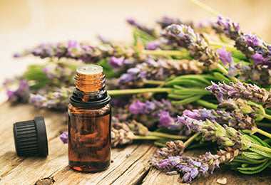 Scent Your World - 10ml Essential Oil