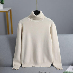 Thick Warm Turtleneck Womens Sweaters - Christmas Sweater - Aesthetic Outfits