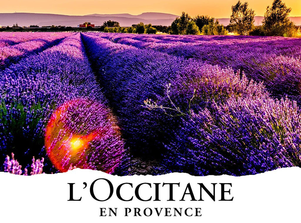 Something Special is on its way - L'Occitane