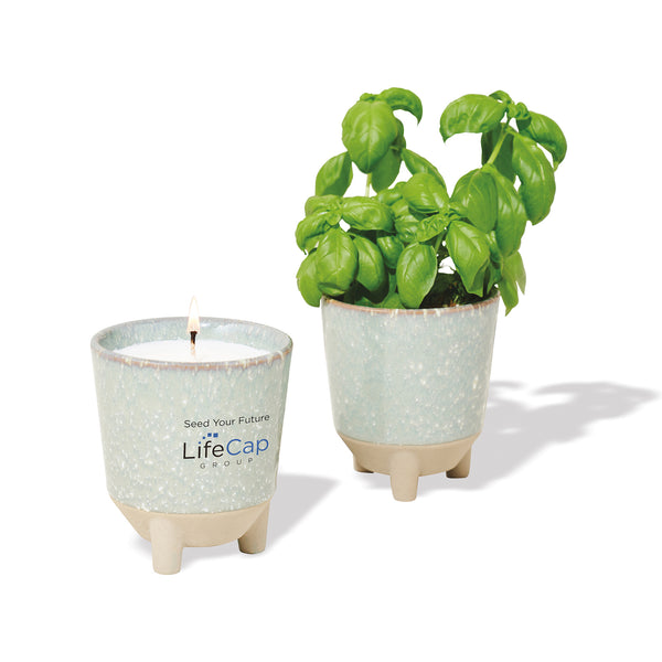 Glow & Grow Gift Set: Basil