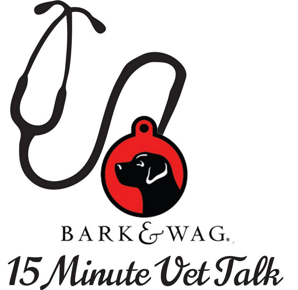 Episode 1 – How To Find A Vet