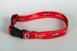 Bark & Wag Mountain Dog Colorado Flag Bear & Moose Collar