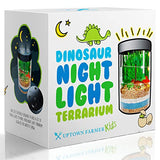 Light-up Terrarium Kit for Kids - Dinosaur Toys for Girls or Boys - Mini Garden that Glows - Great 5 year old Boy Gifts - Stem Educational Kid Science Kits - Experiment w Gardening Crafts for Children