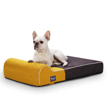 Load image into Gallery viewer, LaiFug Dog Bed/Pet Bed | Oval Pet Bed for Dogs & Cats Machine Washable(small)