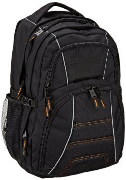 AmazonBasics 17-Inch Laptop BackPack