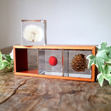 3 Sola cubes set with display case ( Holiday season Gift )
