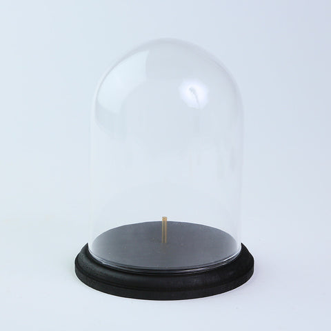 Glass dome with wooden base