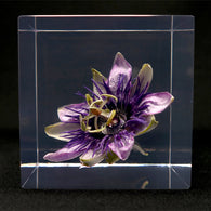 Passion flower in polyester resin  (I)
