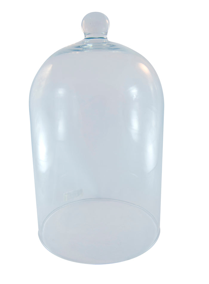 Food Cover Clear Glass
