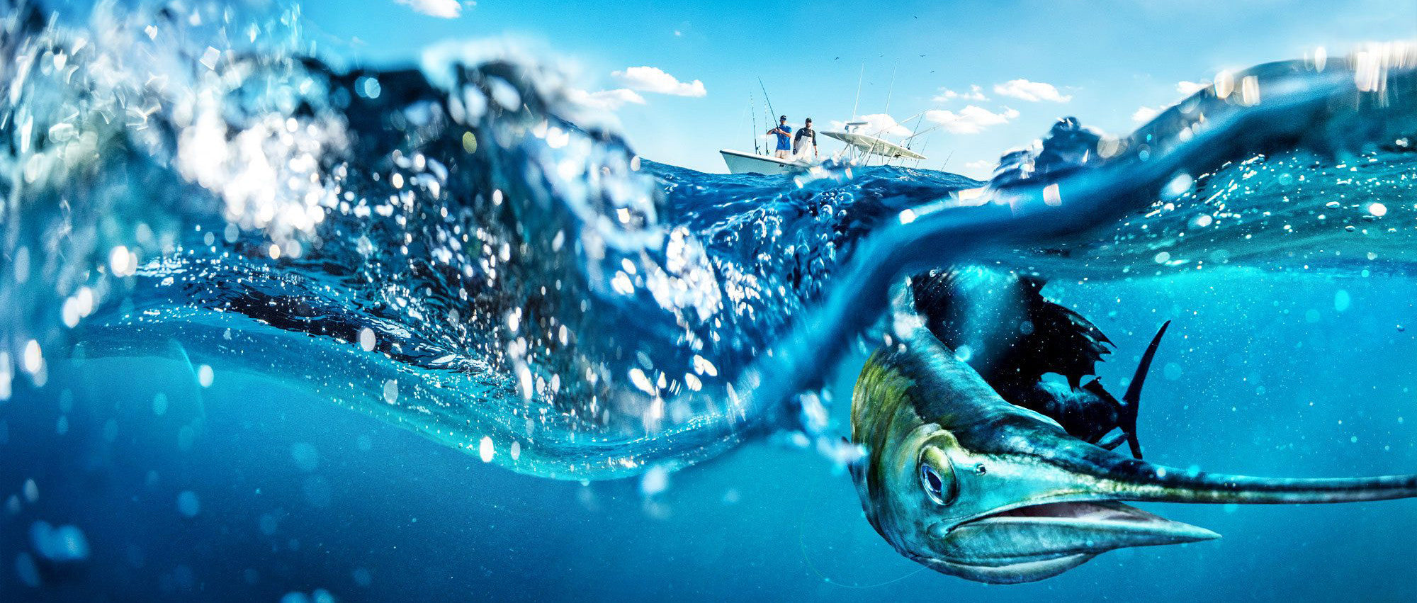 Underwater camera for luxury yachts, fishing boats. Sea what lies under your boat