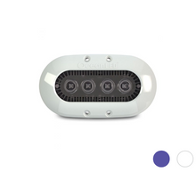 OceanLED X-SERIES X Ultra White 012301W | Midnight Blue 012302B