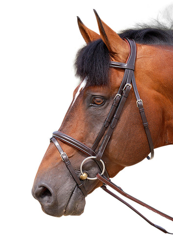 Dyon Classic Flash Bridle