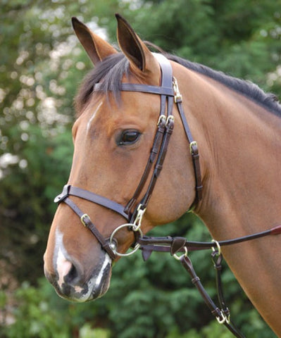 Dyon Working Bridle