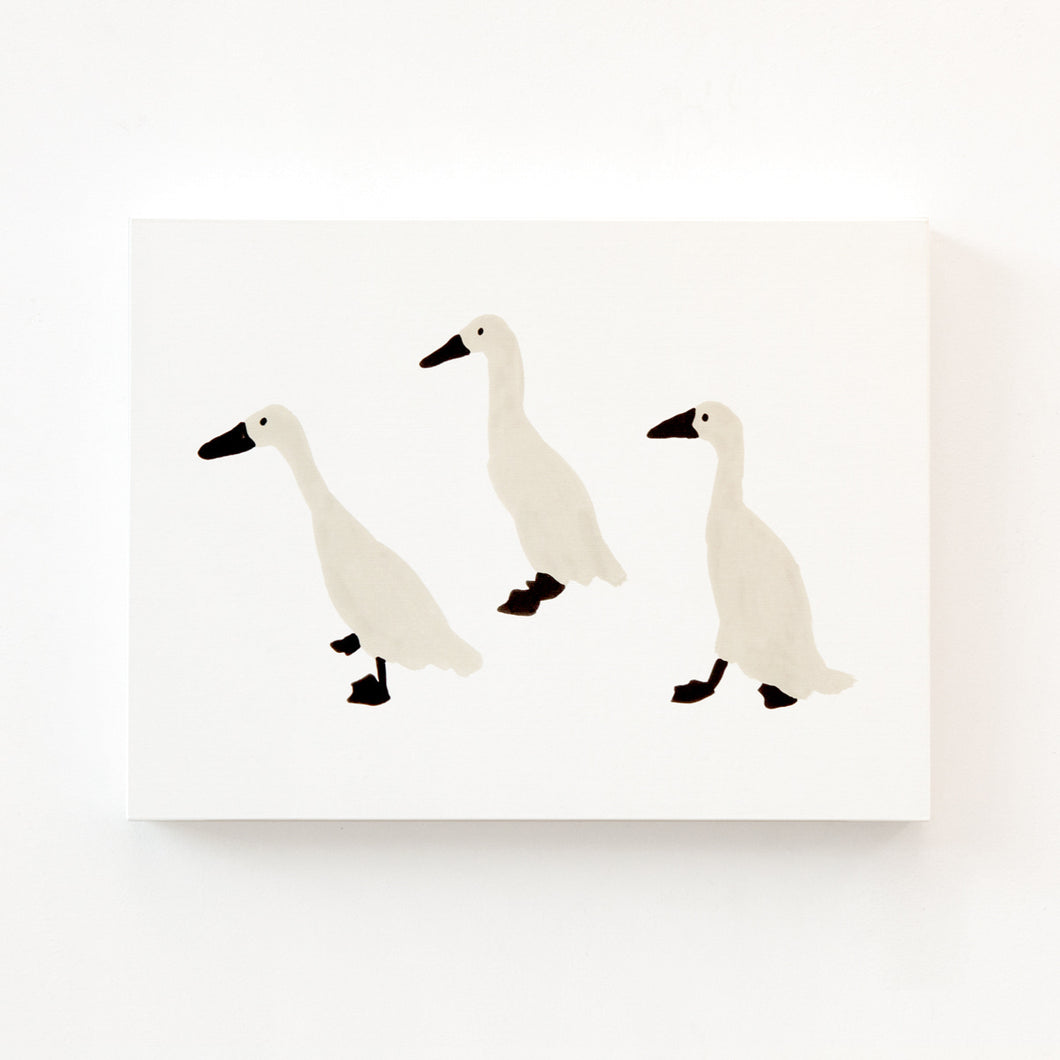 INDIAN RUNNER DUCK CANVAS