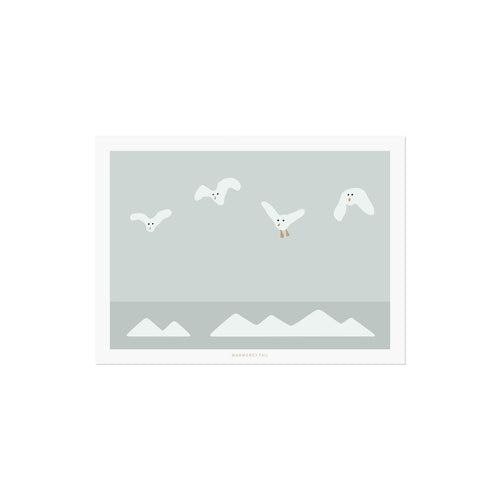 FLYING SEAGULLS POSTCARD