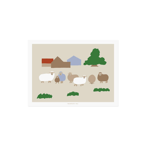 SHEEP FARM POSTCARD