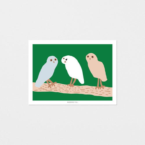 HELLO OWLS - GREEN POSTCARD