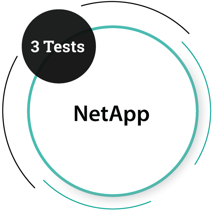 NetApp (3 Tests) IT Service Company - PlacementSeason