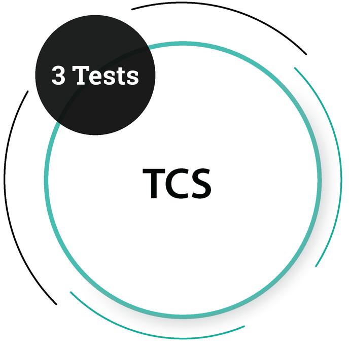 TCS (3 Tests) IT Service Company - PlacementSeason