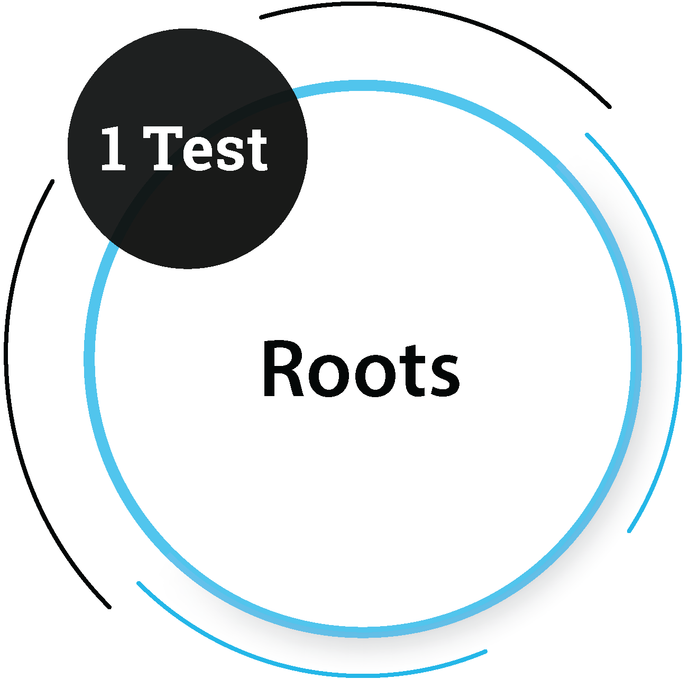 Roots (1 Test) Core Engineering Company - PlacementSeason