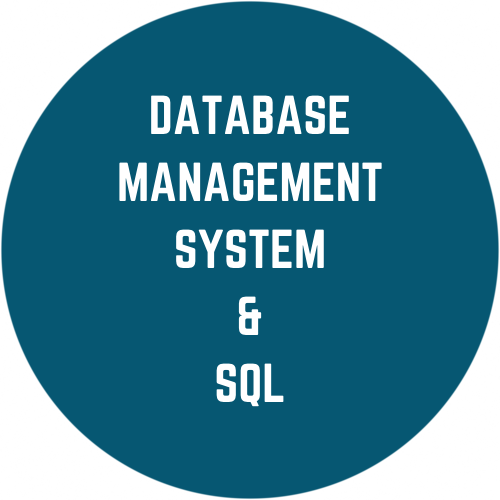 Database Management System and SQL