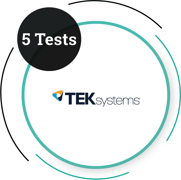 TEK Systems (5 Tests) IT Service Company - PlacementSeason