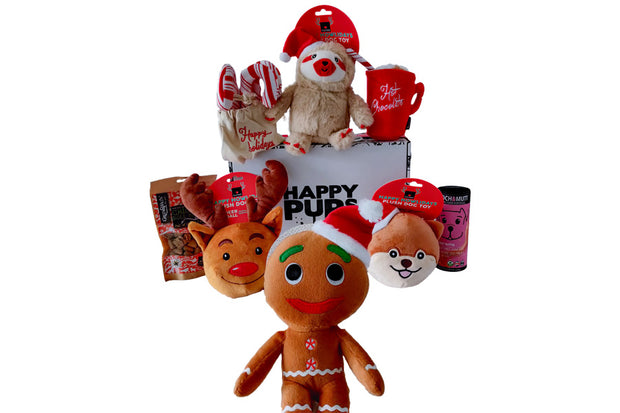Christmas Dog Gift Box of Toys and Treats