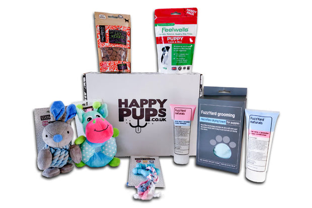 Deluxe Puppy Box - Puppy Treats, Toys and Grooming Box