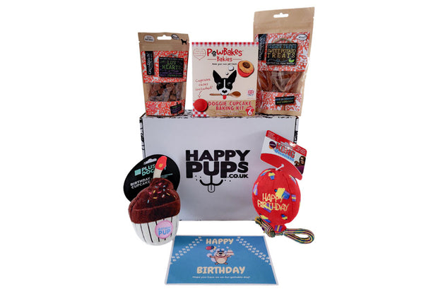 Large Dog Birthday Box with Kong Balloon