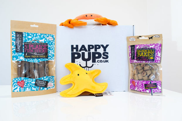 Under the sea dog toy and treat box by Happy Pups featuring 2 plush toys and 2 bags of treats in front of a branded box