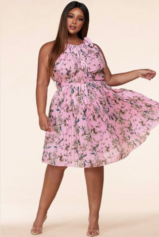 Pretty In Pink Dress - EnChantes Closet Plus Size Boutique