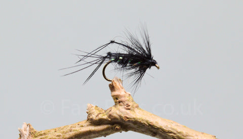 Black Bristol Hoppers x 3 - Fast Flies top trout flies