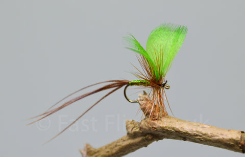 Green Drake May Flies - Fast Flies top trout flies