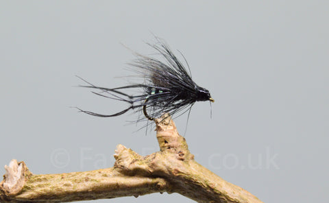 CDC Black Bristol Hoppers x 3 - Fast Flies top trout flies