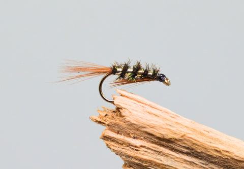 Gold Holo Diawl Bachs x 3 - Fast Flies top trout flies